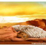 IMAGENES DE ANGELES SIN ALAS